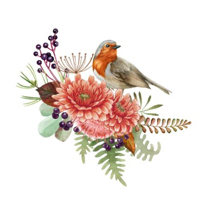 Obraz Floral arrangement with robin bird. Watercolor illustration. Rustic natural autumn element. Hand drawn forest fall decor with bird, flowers, thistle, leaves, fern, berries. On white background