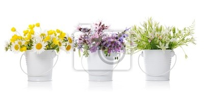 Obraz Floral układ