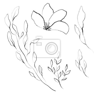 Flower Plant Botanical Frame texture Background Watercolor