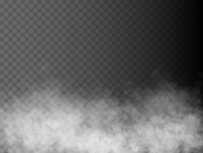 Obraz Fog or smoke isolated transparent special effect. White vector cloudiness, mist or smog background. Vector illustration