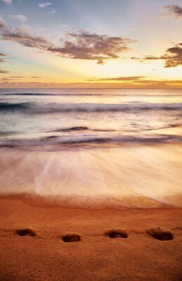Footprints on a tropical beach at sunset.