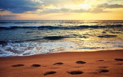 Footprints on a tropical beach at sunset, selective focus, Sri Lanka.