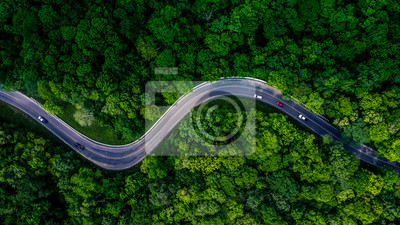 Obraz Forest Road, Aerial view over tropical tree forest with a road going through with car.