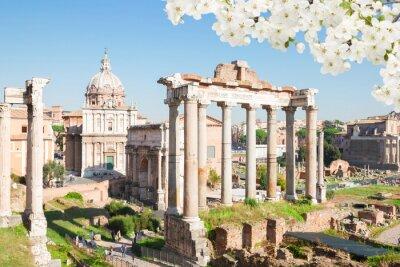 Obraz Forum - Rzymskie ruiny w Rzymie, Włochy