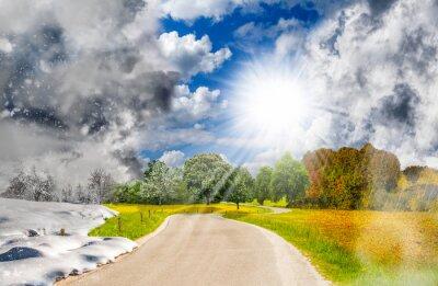 Obraz Four season landscape - one year cycle