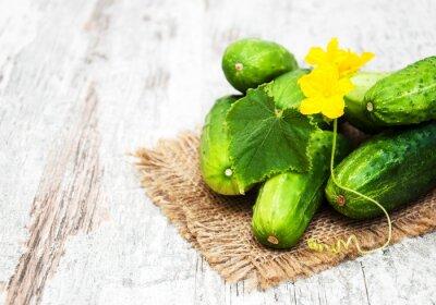 Obraz Fresh cucumbers
