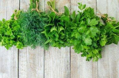 Obraz Fresh homemade greens from the garden. Selective focus. nature.