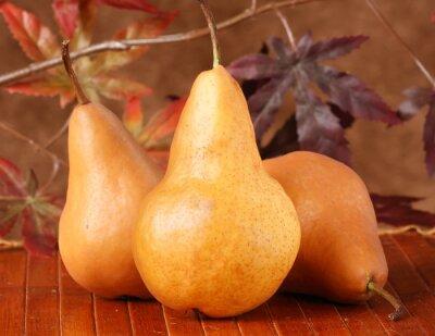 Obraz frutta fresca