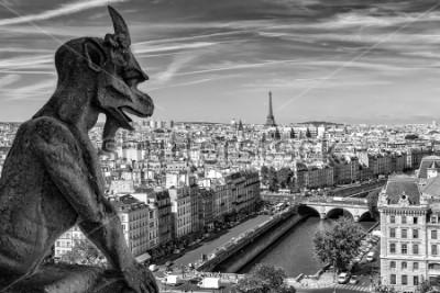 Obraz Gargulec z widokiem na miasto Paryż, Francja