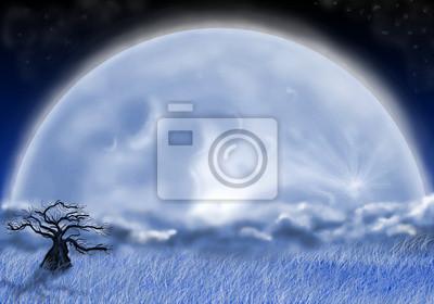 Obraz głupcem księżyc