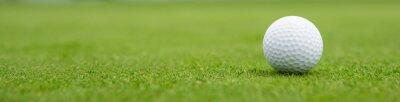 Obraz golf ball on green, banner