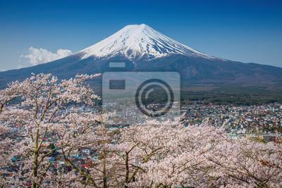 Góra Fuji na wiosnę, kwiat wiśni Sakura