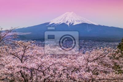 Góra Fuji wiosną, Sakura Cherry Blossom
