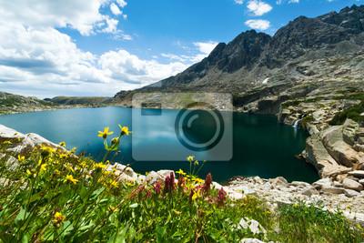 Góry Kwiaty Pejzaż Kolorado