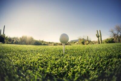 Obraz Graj w golfa - golf piłka szeroki kąt widzenia efekt obiektywu typu rybie oko.