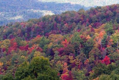 Obraz Great Smoky Mountains National Park w pełnym kolorze jesieni