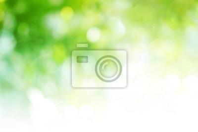Obraz Green background for people who want to use graphics advertising.