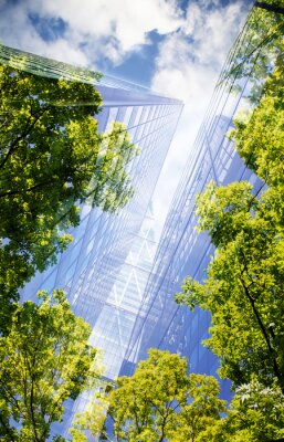 Obraz green city - double exposure of lush green forest and modern skyscrapers windows.