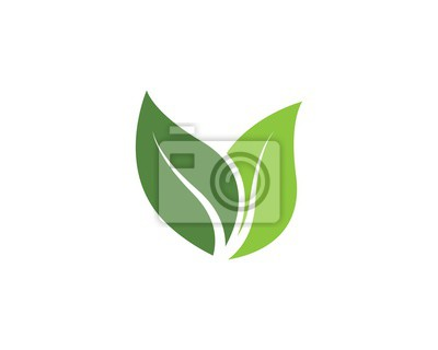 Obraz green leaf ecology nature vector icon