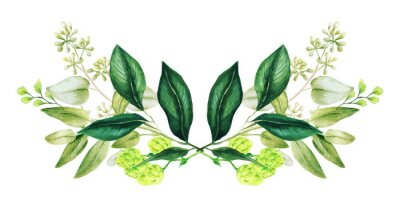 Obraz Greenery decorative bouquet, composed of fresh green leaves