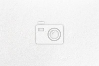 Obraz Grey background paper texture