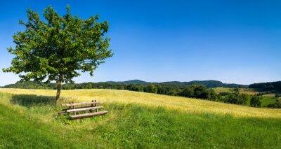 Obraz Grüne Landschaft mit blauem Himmel und Parkbank
