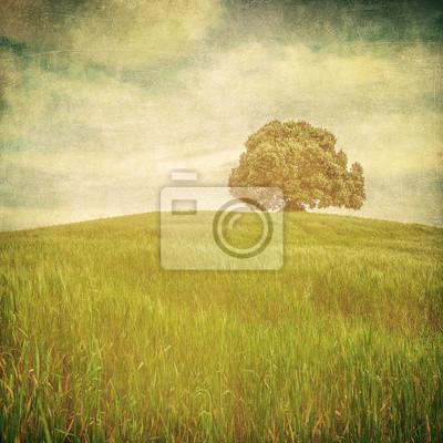grunge wizerunek drzewa na tle grunge
