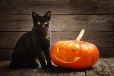 Obraz Halloween Dynia i Czarny kot na tle drewnianych