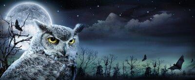 Obraz Halloween sceny z Owl I Full Moon