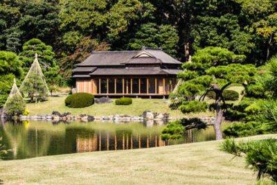 Obraz Hamarikyu garden in Tokyo,Japan.