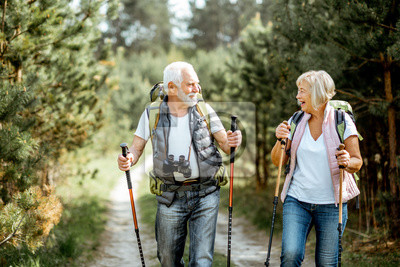 Obraz Happy senior couple hiking with trekking sticks and backpacks at the young pine forest. Enjoying nature, having a good time on their retirement