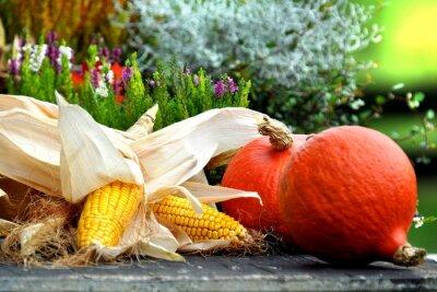 Obraz Herbstfrüchte