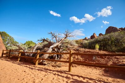 Hiking trail in Arches National Park, Utah, USA.