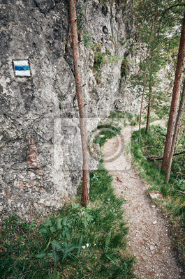 Hiking trail marking on a rock in Mala Fatra National Park, selective focus, Slovakia.