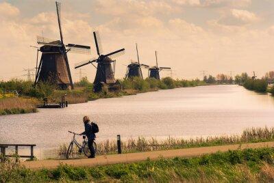 Obraz Holenderski krajobraz z wiatrakami