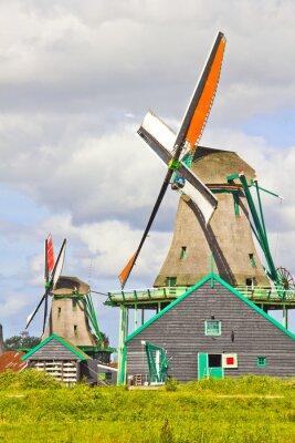 Obraz Holenderskie wiatraki