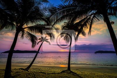 Holiday tła z palmami sylwetki o zachodzie słońca.
