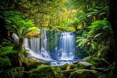 Obraz Horseshoe Falls w Park Narodowy Mt Field, Tasmania, Australia