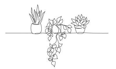Obraz House plants in pots. Continuous one Line drawing