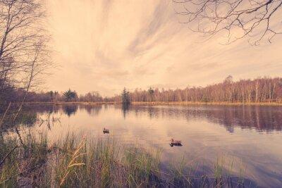 Obraz Idylliczne krajobrazy jeziora z kaczki na przynęty