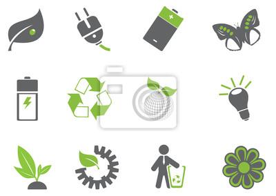 ikon ekologii