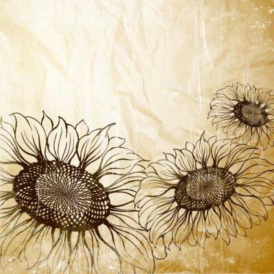 Obraz Ilustracja słonecznika