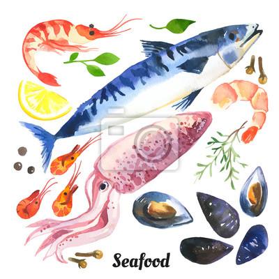 Ilustracja wektora z akwareli żywności. Makrela. Zestaw Akwarela z owoców morza z pstrąg, łosoś i małże rysowane ręcznie na białym tle.