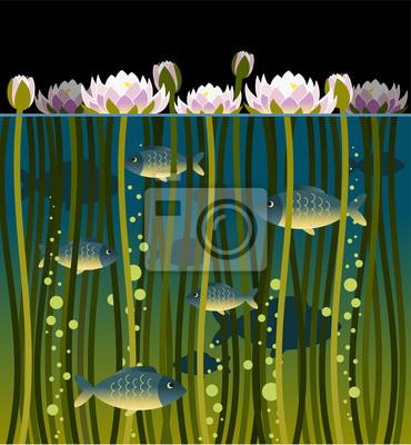 Obraz Ilustracja z lilii wodnej i ryb