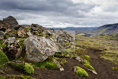 Islandia kamień krajobraz