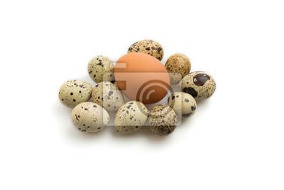 Obraz Jajko otoczony jaj przepiórczych na białym tle