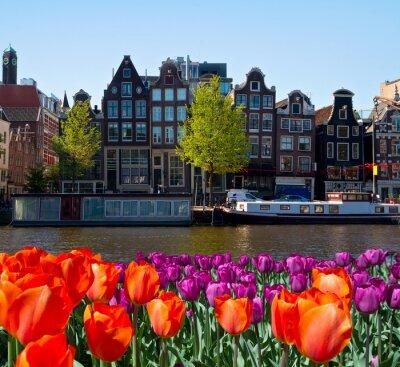 Obraz Jeden z kanałów w Amsterdamie