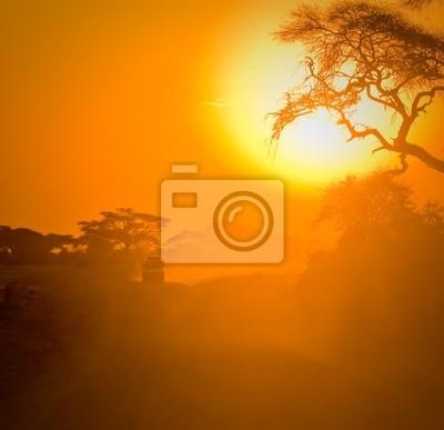 jeep safari jazdy poprzez sawanny w zachodzie słońca