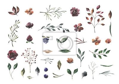 Jej kwiaty. Akwarela kwiaty i liście