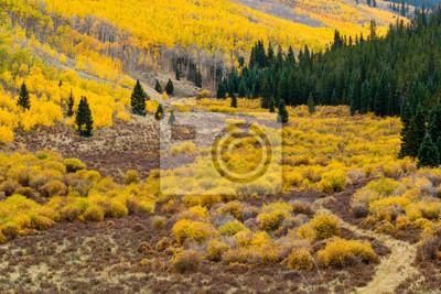 Jesień Colorado Pejzaż górski